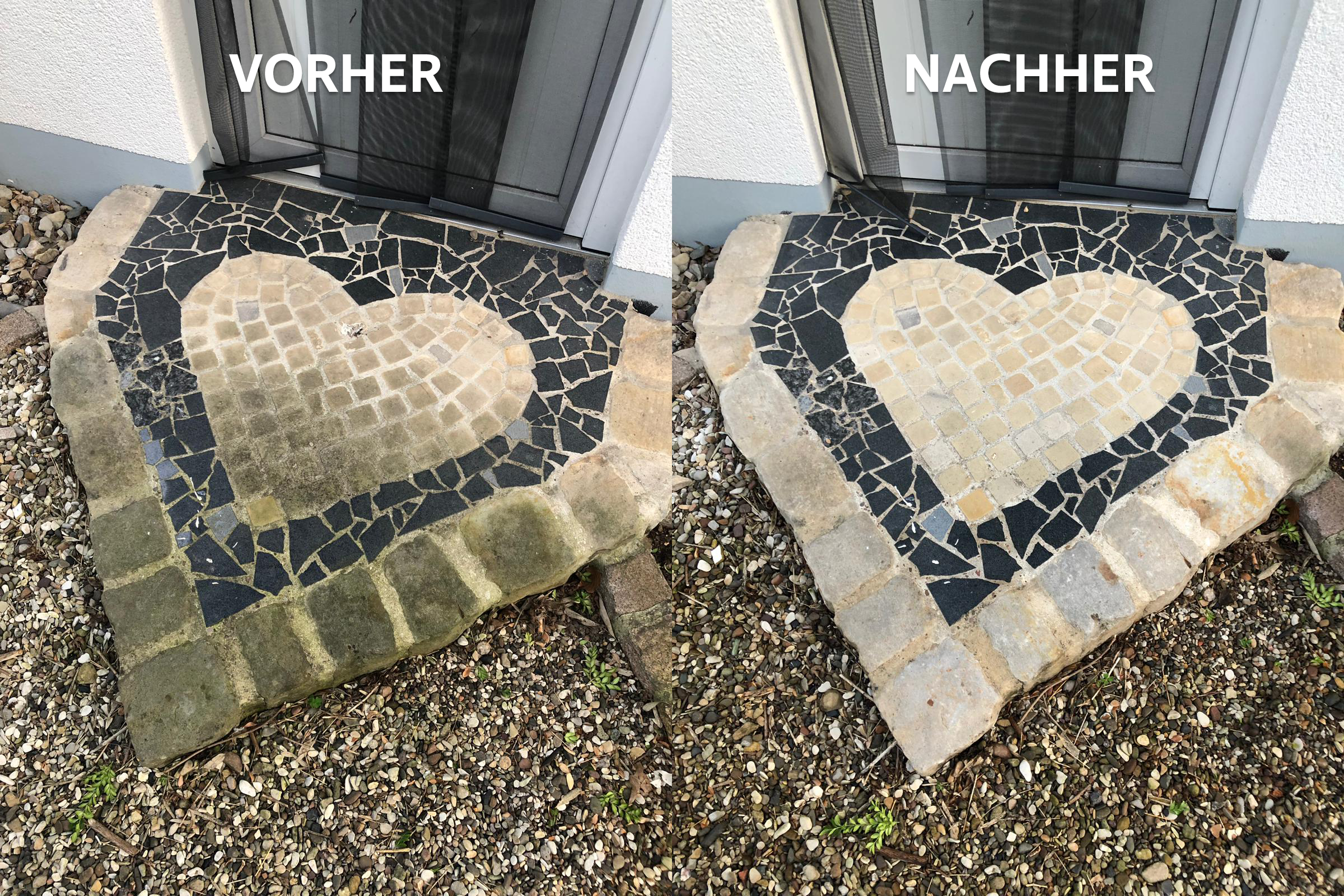 You are currently viewing Moos – Algen & Pilzbefall von Naturstein entfernen