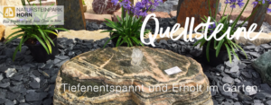 Read more about the article Quellsteine