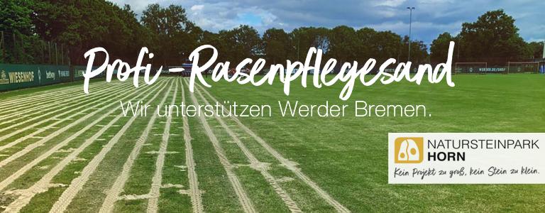 You are currently viewing Rasenpflege für ein sattes Grün.